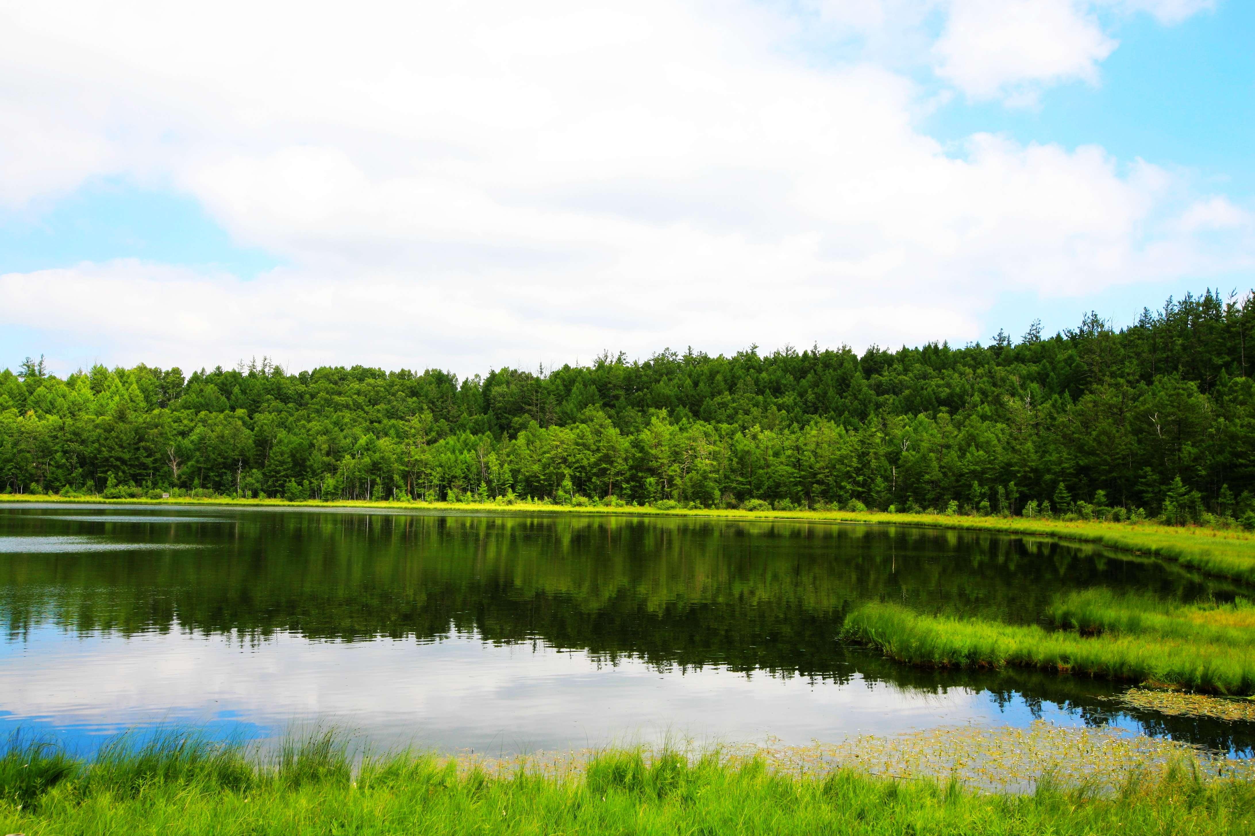 day 02---- 阿尔山--海拉尔 早餐后,游览火山堰塞湖泊—【杜鹃湖