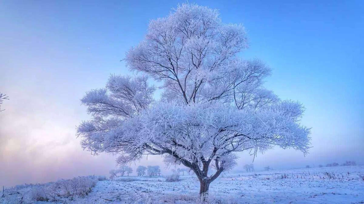吉林雾凇岛,松花湖风景区 大巴2日游